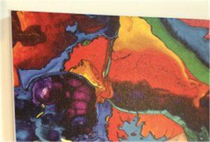 Canvas druk monster van WER-E2000UV