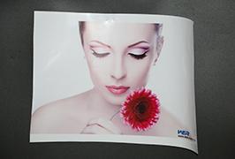 Self Adhesive Vinyl gedruk deur 3.2m (10 voet) eko oplosmiddel drukker WER-ES3202